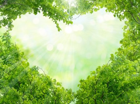 37167614 - green leaves in heart shape